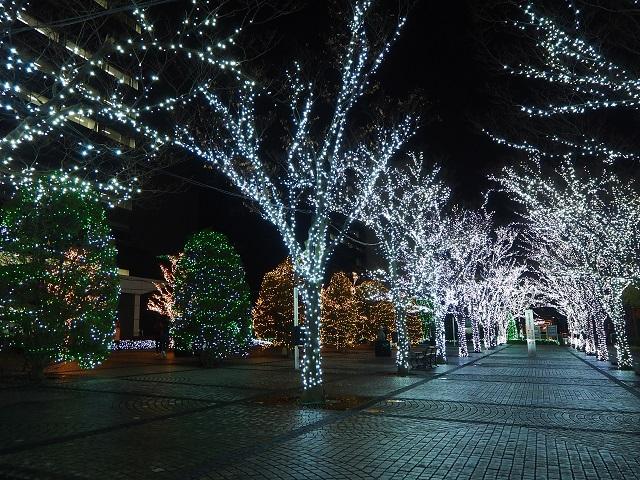 京セライルミ-1.jpg
