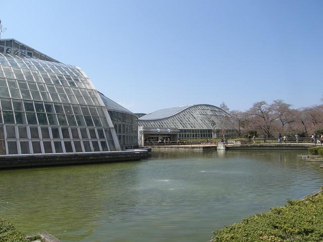 京都府立植物園.jpg