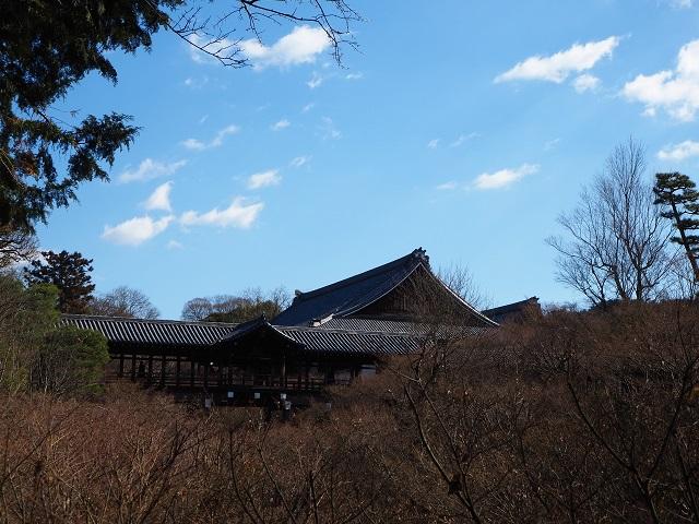 冬の東福寺.jpg