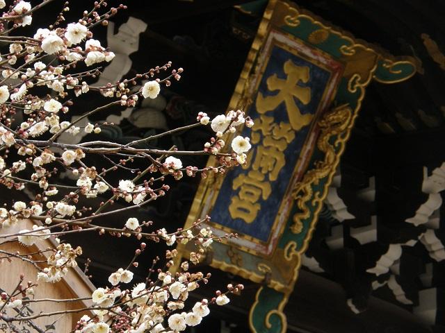 北野天満宮-3.jpg