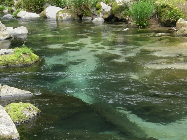 川の流れ.jpg