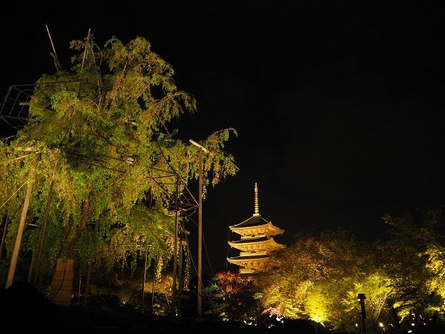 東寺の夜桜2018・OMD.jpg
