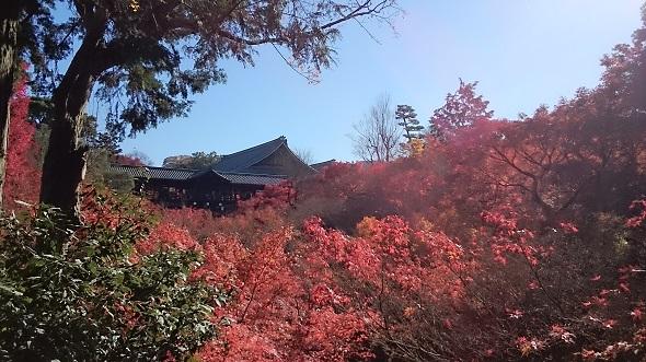 過去の東福寺.jpg